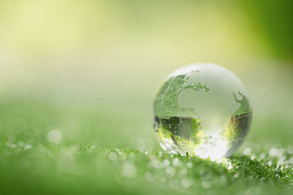 close up of crystal globe resting on grass in forest 2